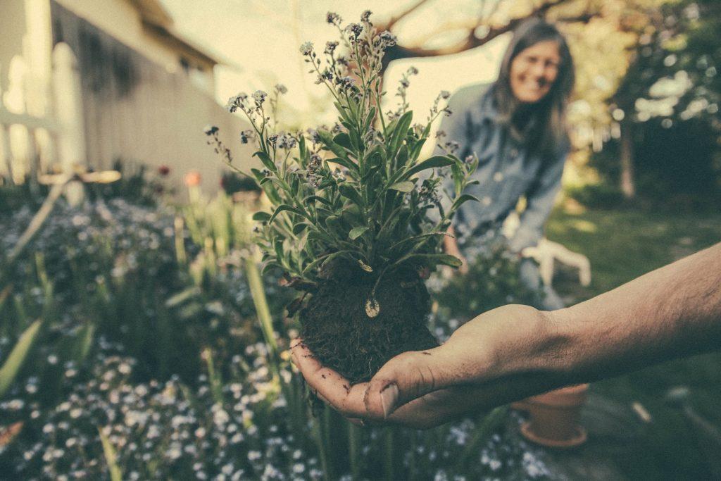 Ideeën voor gemeenschapsevenementen: Organiseer een tuinierdag.